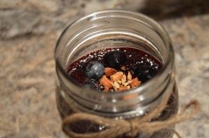 Blueberry Chia 1
